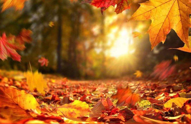 Ottobre: il mese dei colori